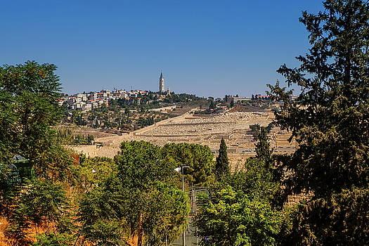 Elenarts - Elena Duvernay photo - Mount of Olives, Jerusalem, Israel