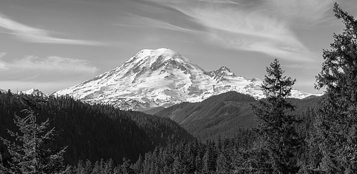 Mount Rainier by Chad Tracy