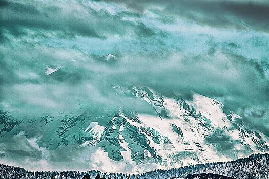 Mount Rainier by Gary Larson