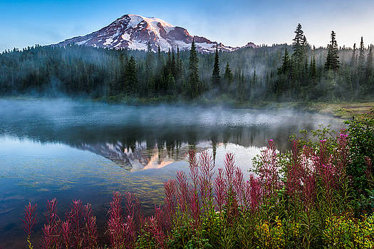 Mount Rainier Majesty by Mike  Walker