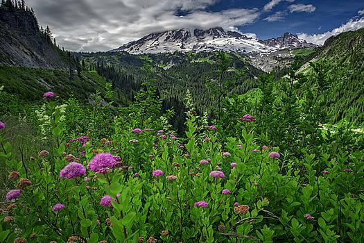 Rick Berk - Mount Rainier