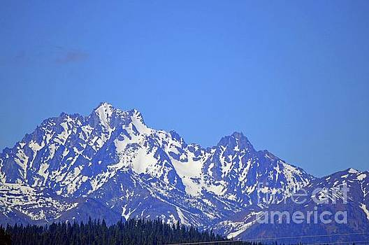 Mountain Range Washington State by Carol Eliassen