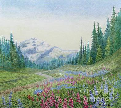 Mount Rainier Wildflowers by Elaine Jones