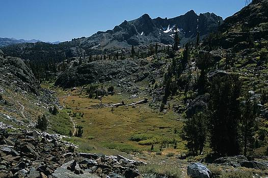 Don Kreuter - Mount Ritter and Meadow