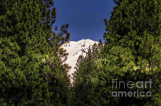 Mount Shasta #2 by Blake Webster