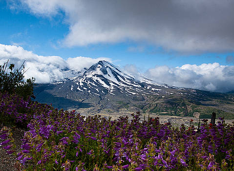 Mount St. Helens by Larry Hughes