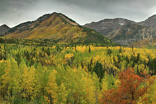 Mount Timpanogos Fall Colors by Dean Hueber