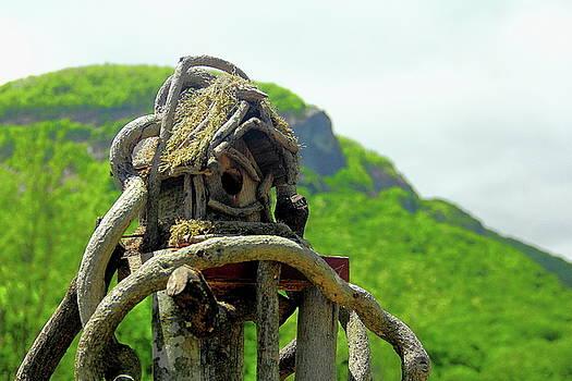 Allen Nice-Webb - Mountain Birdhouse