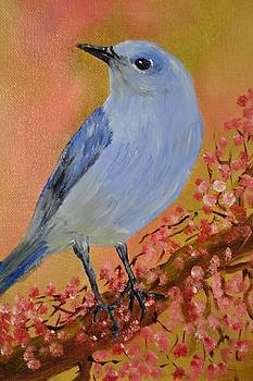 Mountain Blue Bird by James Higgins