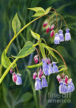 Mountain Bluebells with Background by Sharon Freeman