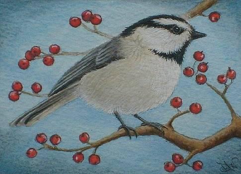 Mountain Chickadee winter berries by Debrah Nelson