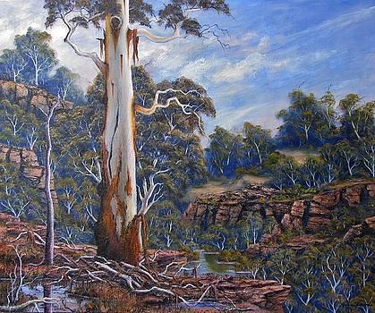 Mountain Cliff Top by John Cocoris