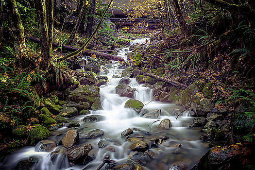 Mountain Creek by Spencer McDonald