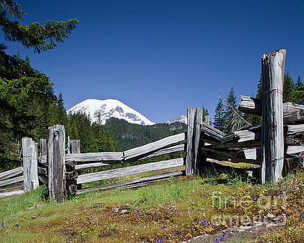 Mountain Field with split rail fence and Mount Rainier by DS Dodd