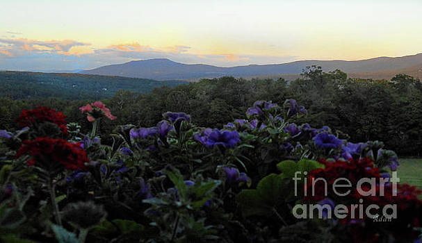 Felipe Adan Lerma - Mountain Flowers #2