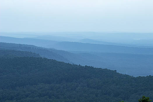 Mountain Fog by Tammy Chesney