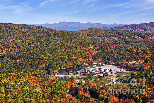 Mountain Foliage II by Sharon Seaward