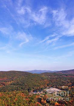 Mountain Foliage by Sharon Seaward