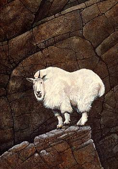 Frank Wilson - Mountain Goat
