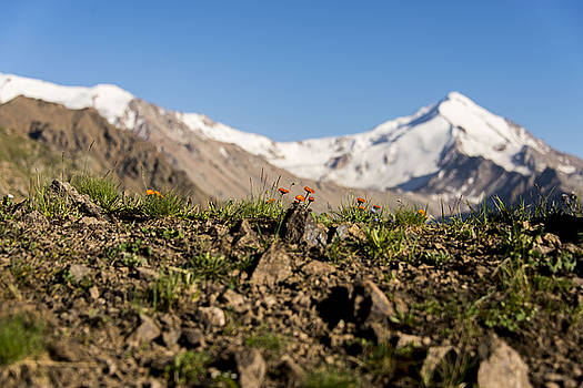 Mountain landscape by Alexey Seafarer