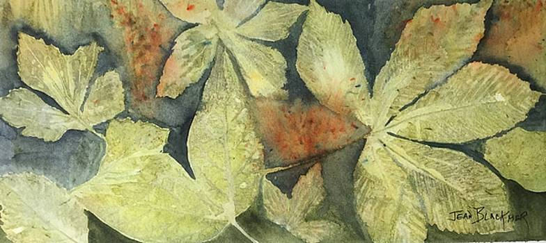 Mountain Leaves by Jean Blackmer