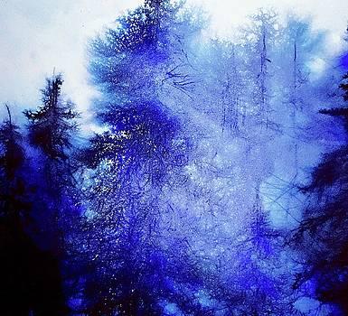 Mountain Light  by Julia S Powell