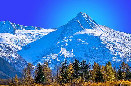 Mountain Majesty by Brian Stevens