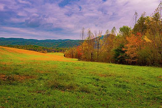 Mountain Meadow II by Steven Ainsworth
