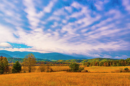 Mountain Meadow III by Steven Ainsworth