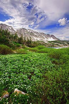 Mountain Muse by Jeff Jewkes