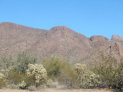 Mountain Peak in Picture Rocks, Arizona by Mozelle Beigel Martin