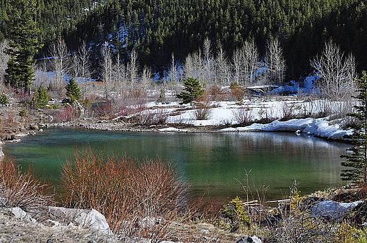 Mountain Pond by D Nigon