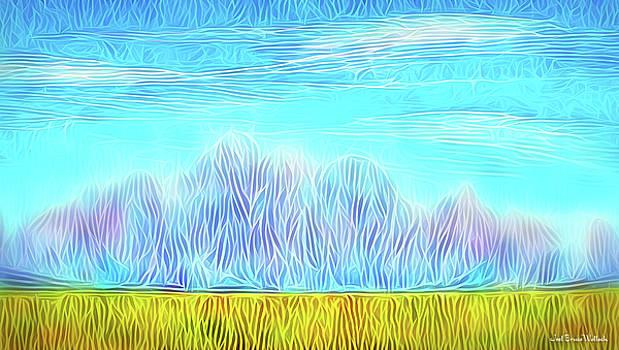 Mountain Range Flow by Joel Bruce Wallach