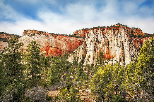 Mountain range in Zion National Park by Daniela Constantinescu