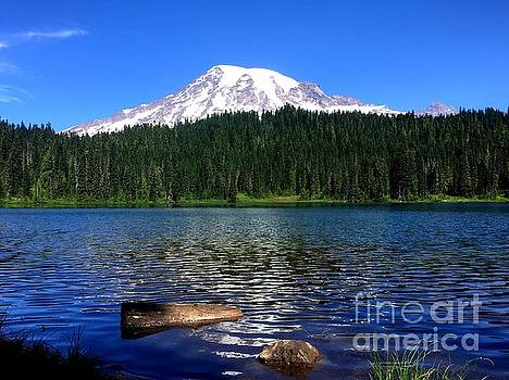Mt Rainier reflection by Chycanuck