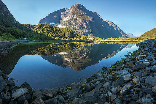Mountain Reflection in the Bay at Milford Sound by Daniela Constantinescu