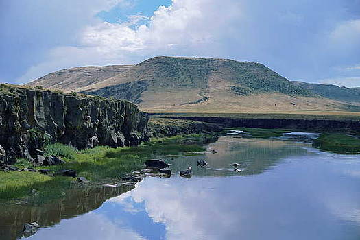 Mountain Reflection by Lynard Stroud