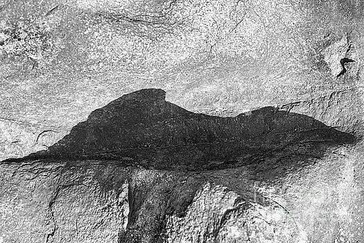 Mountain Shadow by Kiran Joshi