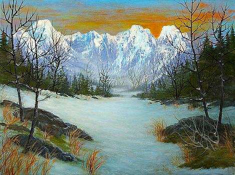 Mountain Snow by Steven  L Parris