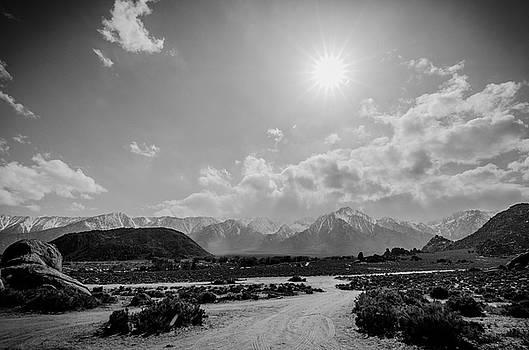 Margaret Pitcher - Mountain Solitude