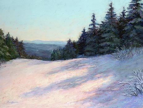 Mountain Stillness by Vikki Bouffard