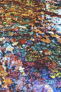 Mountain Stream by Joan McCool