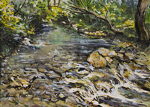 Mountain Stream by Laura Ross