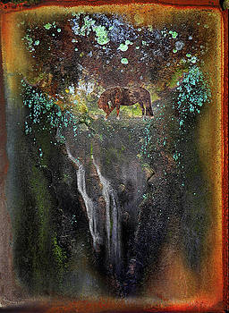 Mountain stream by Paul Parsons