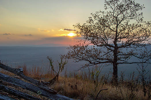 Mountain Sunset View by Tammy Chesney