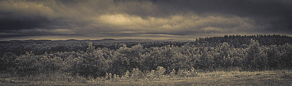 Mountain Top Apple Orchard by Bob Orsillo