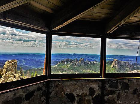 Mountain top view by Teri Ridlon
