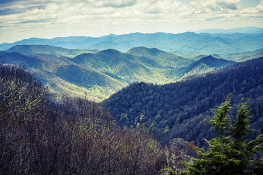 Mountain View by Debbie Morris