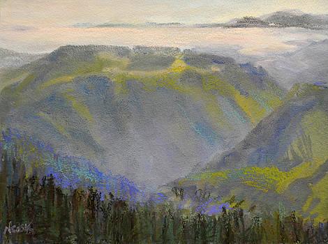 Mountain View by Nanci Cook