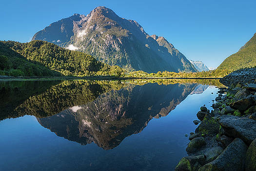 Mountain View Reflections in Water at Milford Sound by Daniela Constantinescu